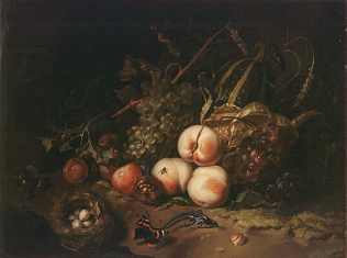 Fruit and Insects - Rachel Ruysch (Oil on wood, 44x60)
