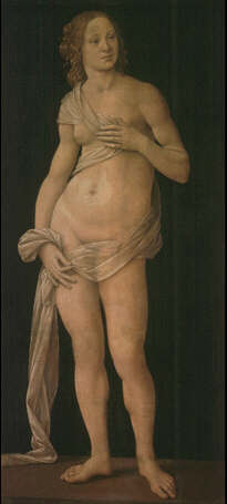 Venus - Lorenzo di Credi (Tempera on wood, 151x69)